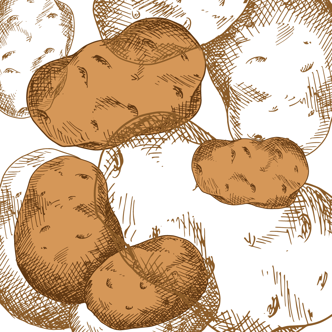 Kartoffelexperiment